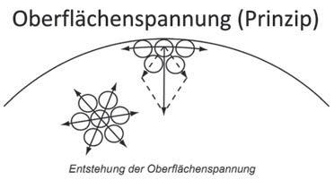 (Abbildung 1)