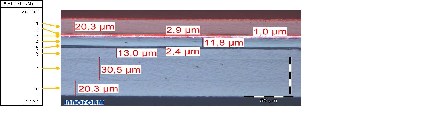 Mikrotomquerschnitt_3