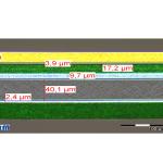 Mikrotomquerschnitt_Schichtaufbau